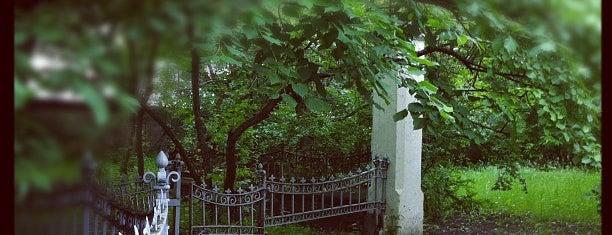 ЗАГС is one of Lugares guardados de Natalya.