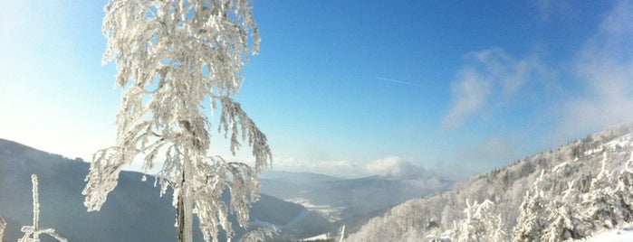 Červenohorské sedlo | 1013 m n.m. is one of Jakub : понравившиеся места.