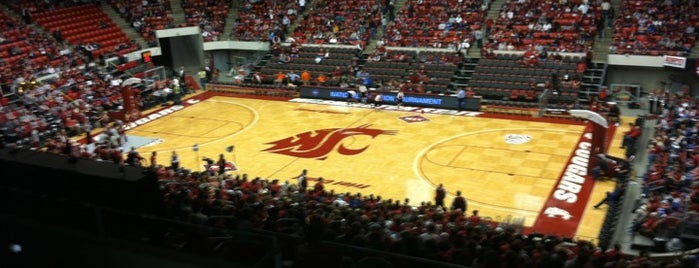 Beasley Coliseum is one of Experience NCAA Teams.