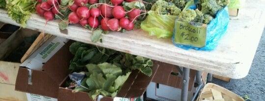 Rochester Farmers' Market is one of สถานที่ที่ Megan ถูกใจ.