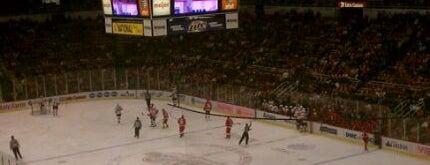 Joe Louis Arena is one of NHL HOCKEY ARENAS.