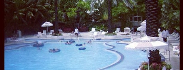 Raleigh Hotel Pool is one of Florida.