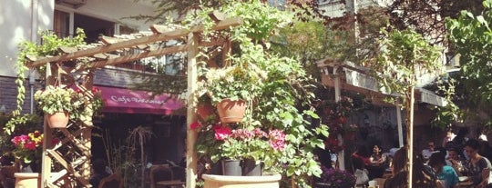 Cafe Botanica is one of Must-Visit ... Ankara.