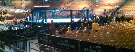 Mandalay Bay Events Center is one of Great Sport Locations Across United States.