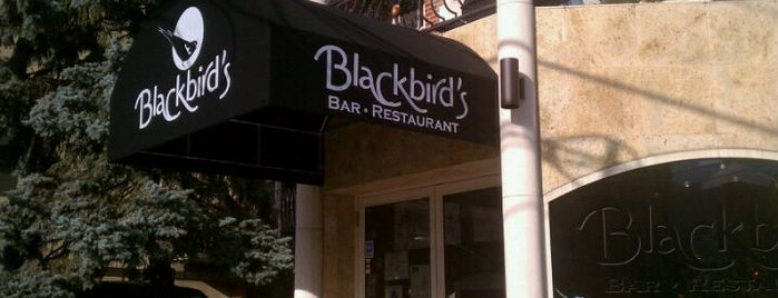 Blackbird's is one of Astoria-Astoria!.