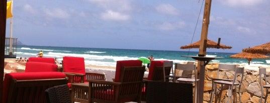 Surfing Beach Club FOOD & DRINK is one of La Manga, larga y húmeda!.