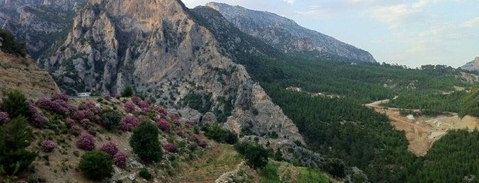 Toros Dağları is one of Denizli & Aydın & Burdur & Isparta & Uşak & Afyon.