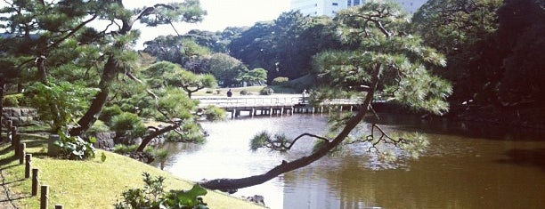 Hamarikyu Gardens is one of Tokyo as a local.
