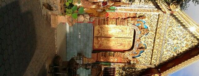 Wat Chai Mongkol is one of Thai Flowers.