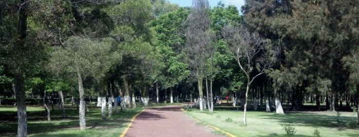 Parque Naucalli is one of Exercise.