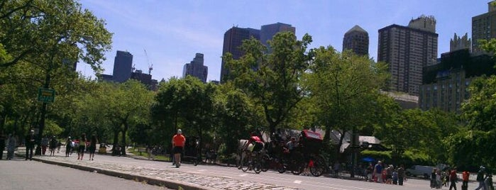 Central Park Loop is one of All-time favorites in United States (Part 1).