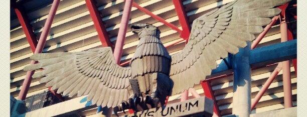 Estádio do Sport Lisboa e Benfica is one of Daily.