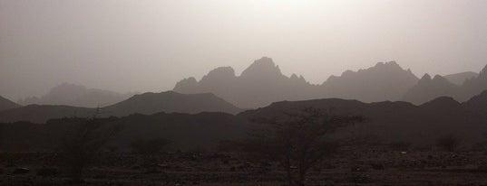 منتزه البيضاء البري #Madinah is one of Suudi Arabistan.