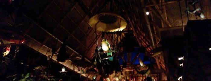 Walt Disney's Enchanted Tiki Room is one of Walt Disney World.