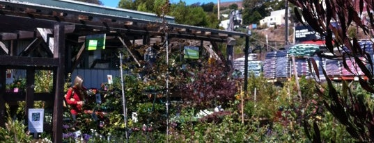 Flowercraft Garden Center is one of Orte, die Tori gefallen.