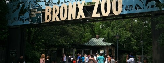 Bronx Zoo is one of Places.