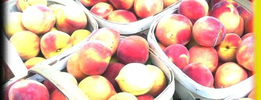 Summerville Farmers Market is one of Tempat yang Disukai Jessica.