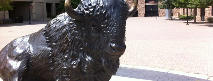 Ralphie The Buffalo is one of Sculptures and Artwork Around Denver.