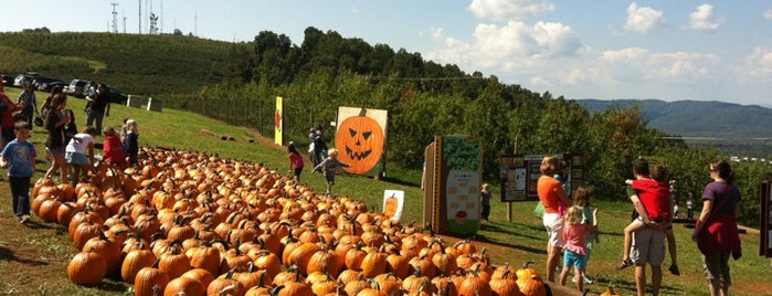Carter Mountain Orchard is one of Family fun.
