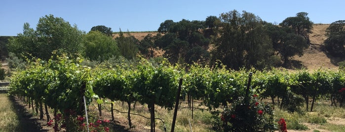 Bent Creek Winery is one of Beyond the Peninsula.