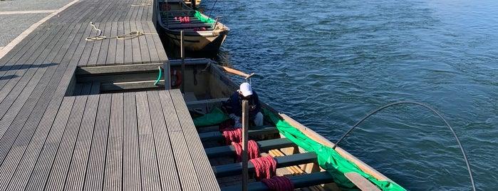Hozu-gawa River Boat is one of Osaka.