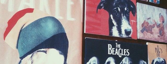 Barkin' Blends Dog Cafe is one of Posti che sono piaciuti a iSA 💃🏻.