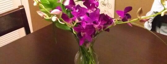 Phoenix Flower Shops is one of Lieux sauvegardés par Rose.