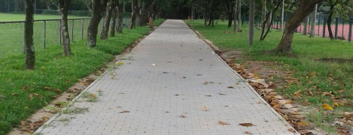 Pista de Corrida is one of Parques SP.