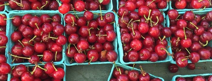 Nyack Farmers Market is one of Nyack, NY.