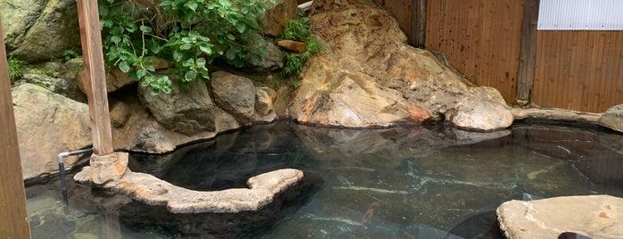 松川渓谷温泉 滝の湯 is one of 温泉.