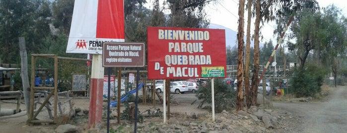 Entrada Quebrada De Macul is one of Parques.