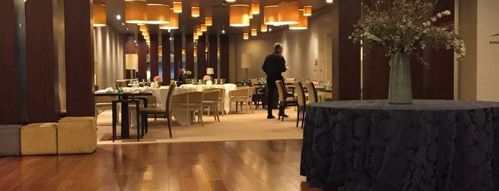 Holiday Inn Porto Gaia is one of สถานที่ที่ Marcello Pereira ถูกใจ.