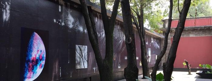 Centro de la Imagen is one of Lugares favoritos de Magaly.