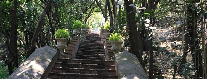 Museo Nacional de Historia (Castillo de Chapultepec) is one of Lugares favoritos de Magaly.