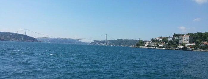 İstinye Sahili is one of İstanbul Avrupa Yakası #4 🍁🍃.