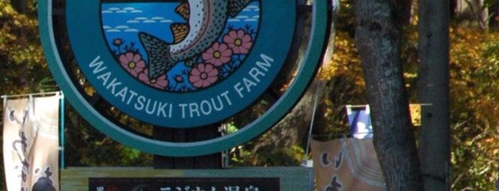 Hotel Wakatsuki Trout Farm is one of Tracey : понравившиеся места.
