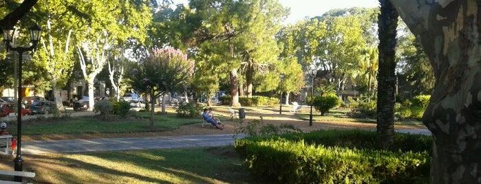 Plaza San Martín is one of Colón y alrededores.