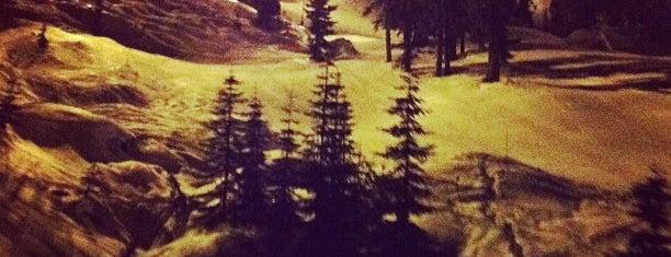 Alpental Ski Area is one of Posti che sono piaciuti a Bridget.
