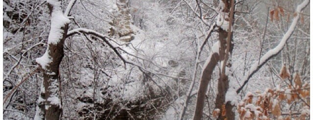 Winchell Trail Meadow is one of Alan'ın Beğendiği Mekanlar.