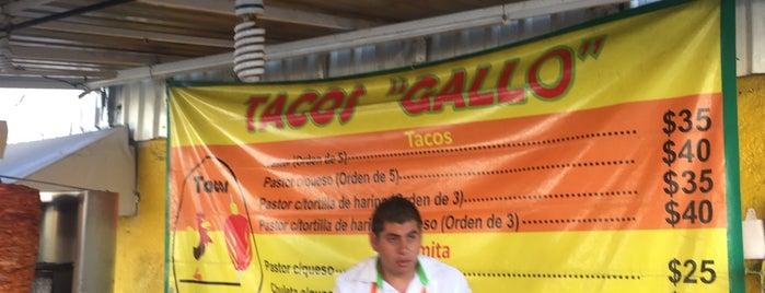 Tacos El Gallo is one of Puebla.