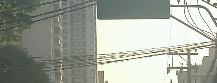Rua Doutor Diogo de Faria is one of M. 님이 좋아한 장소.