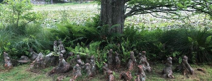 Innisfree Garden is one of Farm & Outdoor.