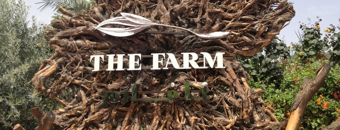 The Farm is one of Dubai 2020.