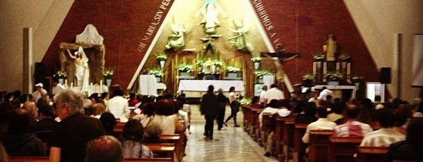 Iglesia de la Medalla Milagrosa is one of Locais curtidos por Karla.