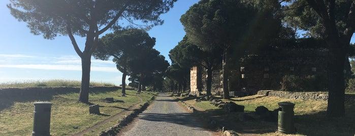 Via Appia is one of สถานที่ที่ Daniele ถูกใจ.