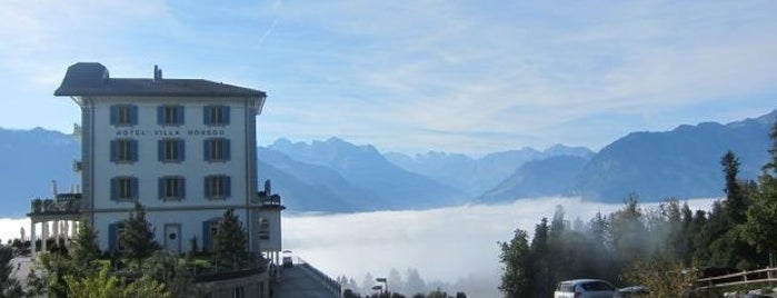 Hotel Villa Honegg is one of Swiss.