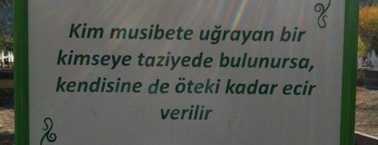 Kayseri Asri Mezarlık is one of สถานที่ที่ Ahmet ถูกใจ.