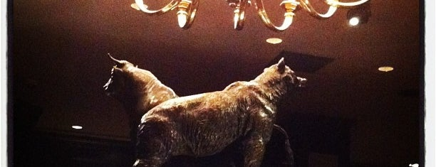 Bull & Bear Steakhouse is one of NYC Ampersand Places.