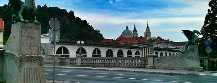 Zmajski most / Dragon Bridge is one of Ljubljana.