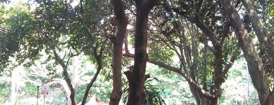 Bawah Pohon Mangga (BPM) FKM UI is one of Firda'nın Kaydettiği Mekanlar.